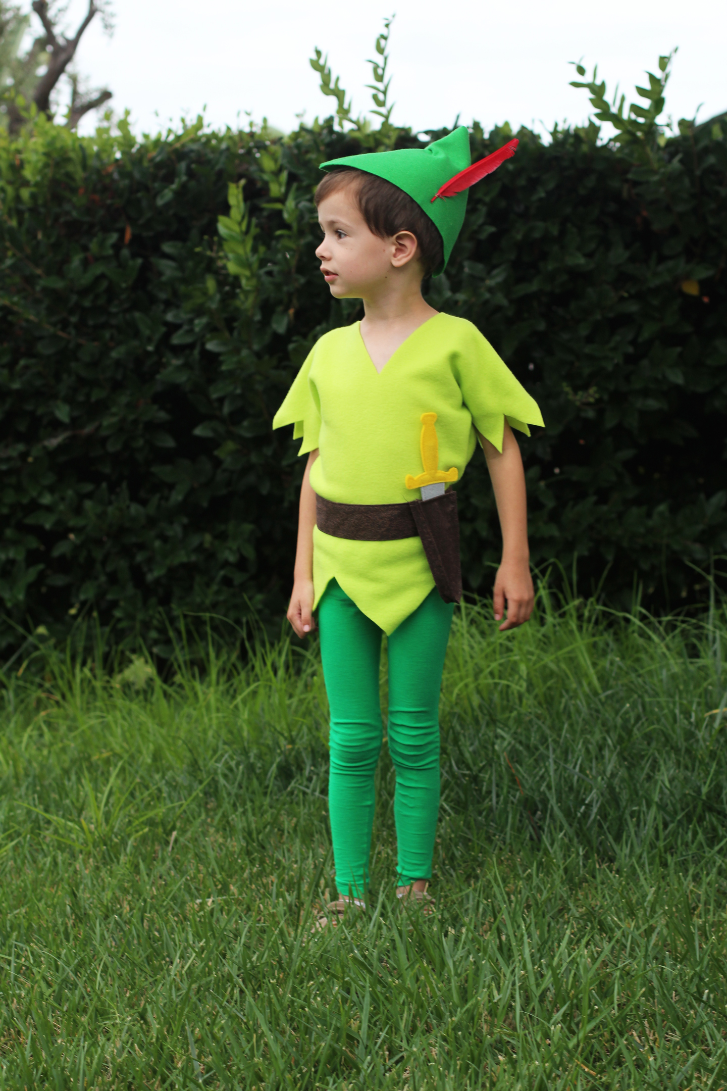 Diy peter pan costumes i decided it would be easiest for my baby to be a lost boy so i asked around for any animal costume and this monkey one which someone gave us solutioingenieria Choice Image