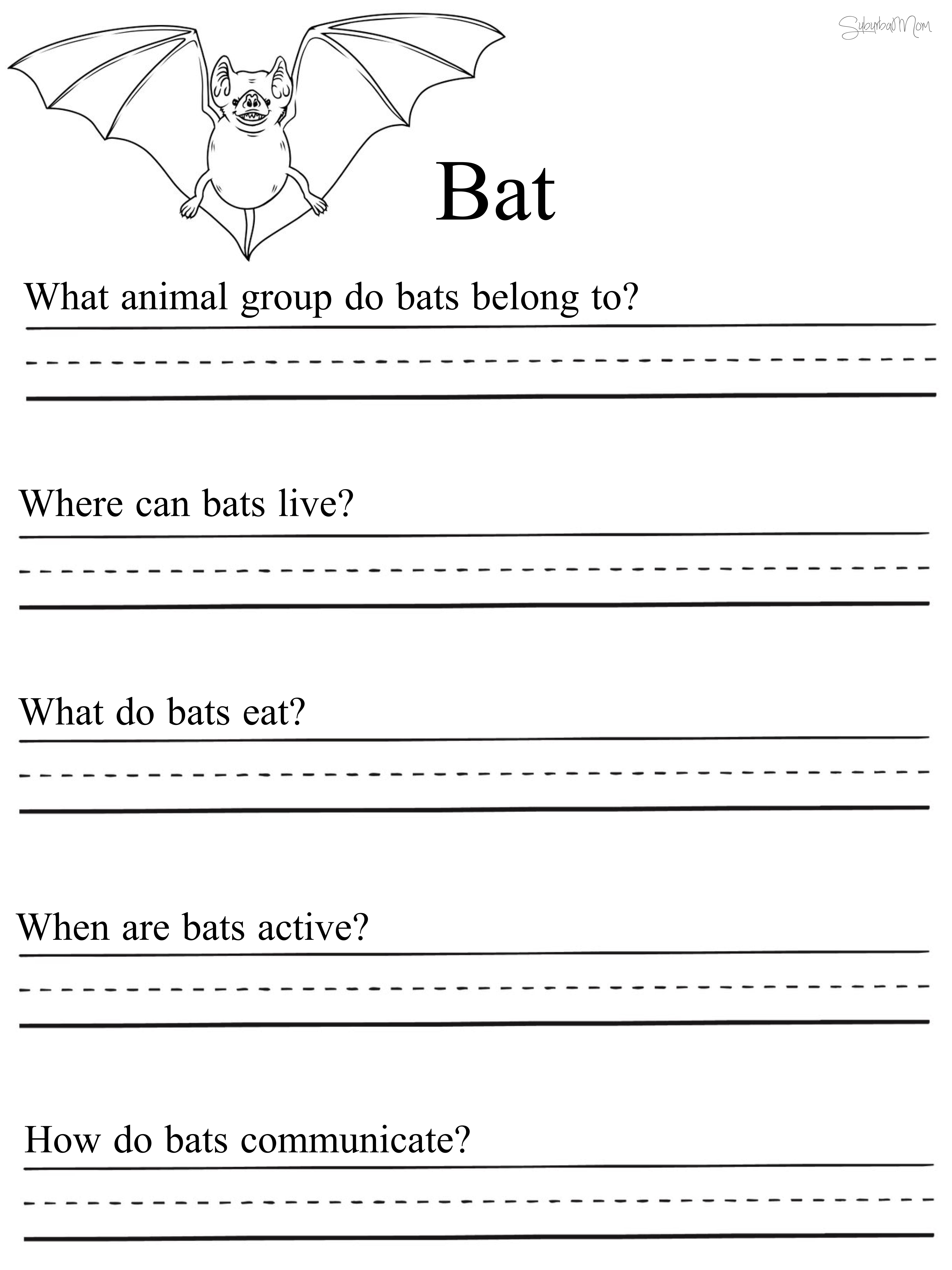 Batworksheet C