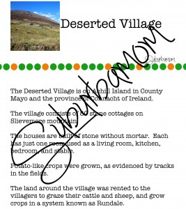 Microsoft Word - Deserted Village Info.docx